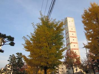 2014.12.3.JPG